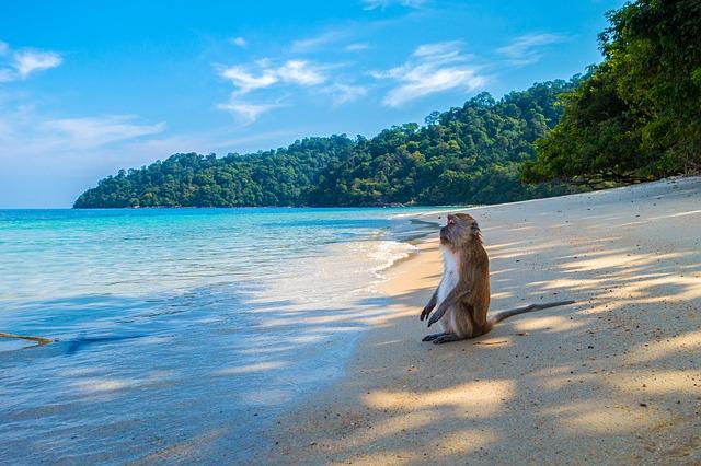 איים מומלצים בתאילנד